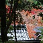 Saiho-ji (Kokedera), Autumn 2016