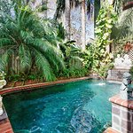 Tropical courtyard & salt water pool