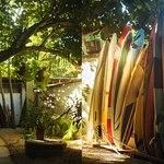 Photo of La Oveja Negra Hostel and Surf Camp