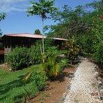 Casa Delicias Playa Montezuma Foto