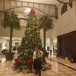 Embassy Suites by Hilton Savannah Photo