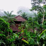 Wasai Tambopata Lodge Photo