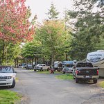 RV Resort at Cannon Beach Image