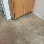 Dirty and stained carpet.