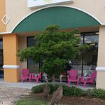Private Island Ice Cream & Sandhill Cranes
