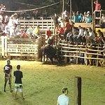 Bull Riding at Villa Real