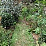 Photo de Orto Botanico di Brera