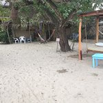 Photos of Junto al Rio Beachfront Bungalows