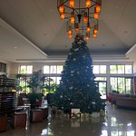 Lobby with beautiful Christmas tree.