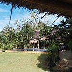 Photo of Bamboo Hideaway