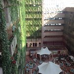 Barcelo Ixtapa Picture