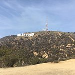 The Tour to the Hollywood Sign with the hostel guys.
