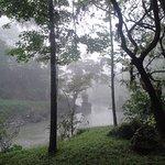 Nuestro bosque junto al Río Cahabón.