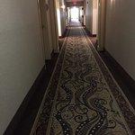 Foto de Homewood Suites by Hilton Boston/Andover