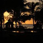 The Palms Bild