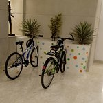 Go Green initiative @ Lemontree premier Hitec city.