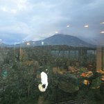 Daisen Royal Hotel Foto