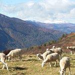 Foto de Domaine de la Vallee d'Ax