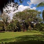 Photo de Safari Park Hotel