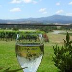 Domain Chandon (Yarra Valley)