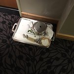 Room service tray left overnight