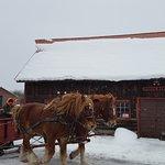 Palmquist's The Farm Photo