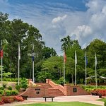 Hilton Garden Inn Atlanta North / Johns Creek照片
