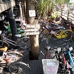 Bike parking gets crowded