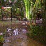 Mayan Princess Beach & Dive Resort Photo