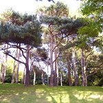 The Pannett Park.