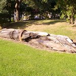 Ships timbers in the Pannett Park.