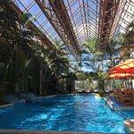 Foto de Grand Tikal Futura Hotel
