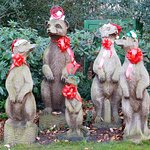 Festive meerkats!