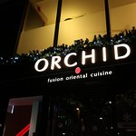 Orchid Cambridge