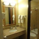 granite vanity & shower