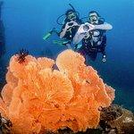 Honeymooners at Phi Phi