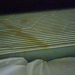 20160621_222630_HDR_large.jpg