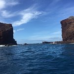 Foto di Hawaii Ocean Rafting