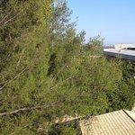 Photo de Porto D'Aldeia Eco Lodge