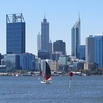 Funcats on the Swan River.
