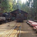 Yosemite Mountain Sugar Pine Railroad Foto
