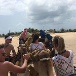 Photo of Camel Rides