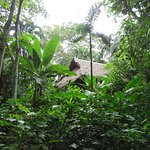 Photo de Anaconda Lodge