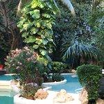 Photo of La Tortuga Hotel & Spa