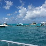 Stingray City. Deeper than expected because of high tide.