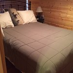 This is the bedroom with the queen bed. Note the elk pillow!