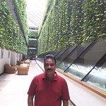 Foto de Hotel Gala