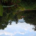 Foto de Bambu Guest House
