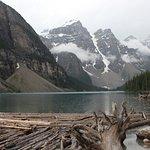 nature jasper national park