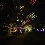 Beautiful lights!